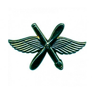 Эмблема ВВС нового образца полевая