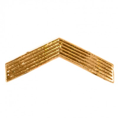 Лычка ефрейтор золото